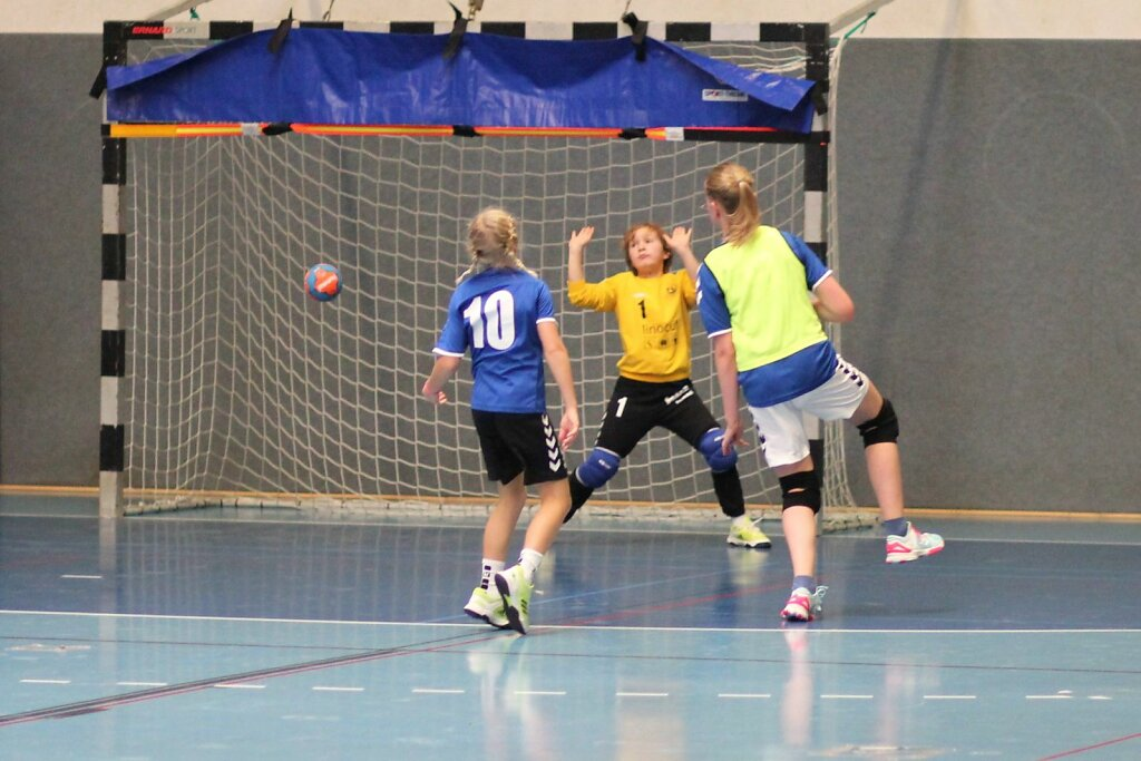 wE2 HSG Blomberg-Lippe - Handball Bad Salzuflen 1
